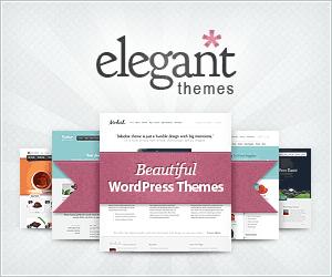 elegant theme banner