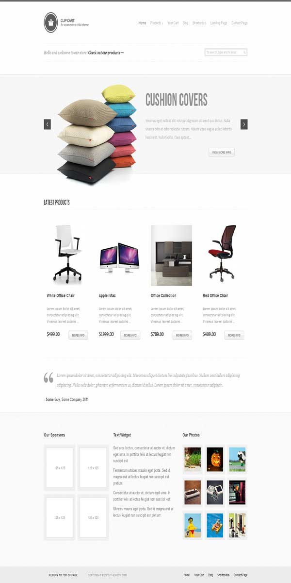 thesis wp e-commerce